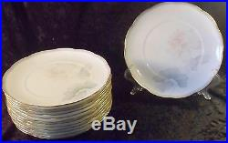 Set of 13 Noritake Garden Empress Fine Bone China Salad Plates Mint